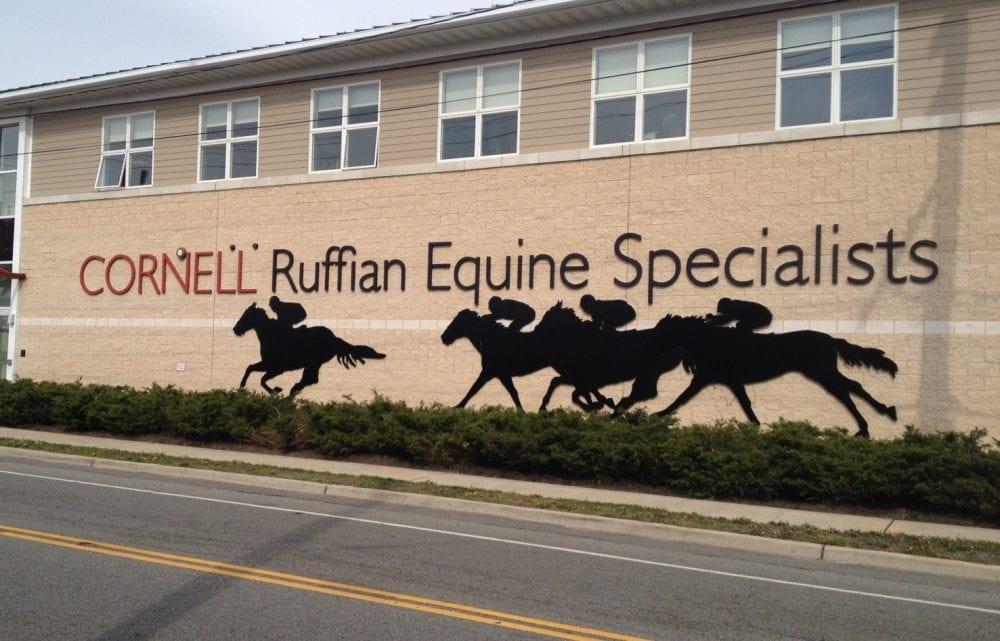 Cornell Opens Ruffian Equine Specialists Near Belmont Park