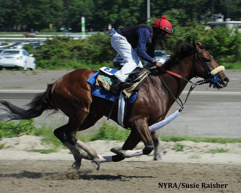 Wicked Strong works at Belmont on June 1.