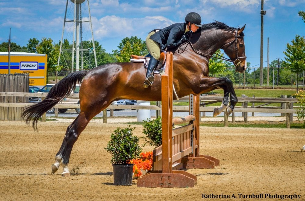 T P R Hosts Second Annual Maryland Thoroughbred Charity