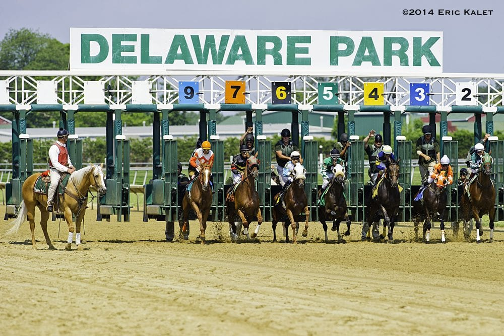 Delaware Racing Commission Adopts Claim Void Rule Horse