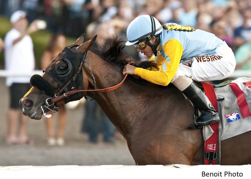 Ocala Jockey Club Releases 2019 Fees Horse Racing News