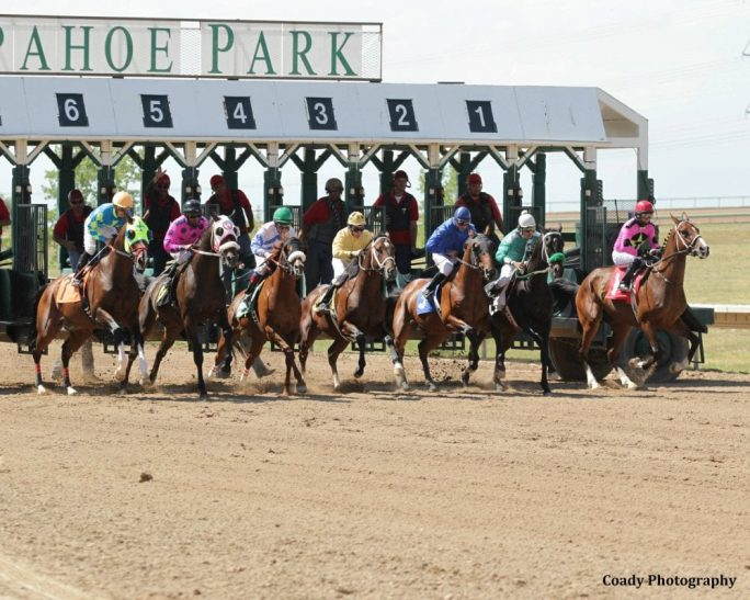 arapahoe park racetrack program