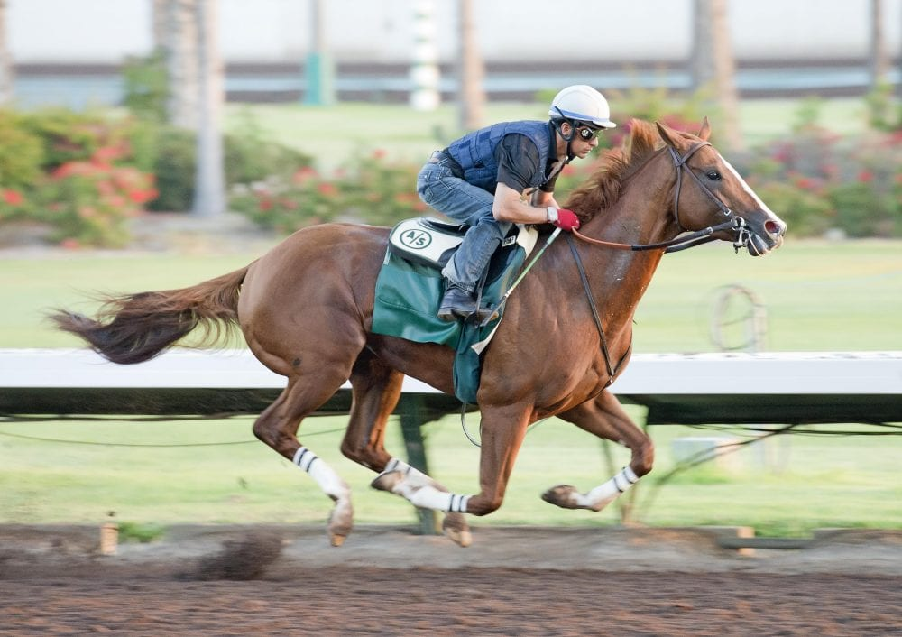 California Chrome Draws Post Position One For Pennsylvania