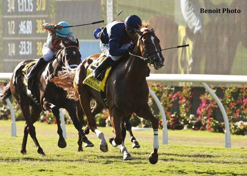 Personal Diary Big Macher Among Nominees To Pair Of Del