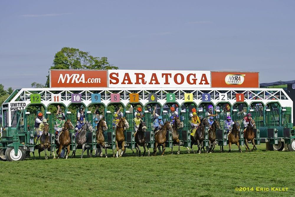 Saratoga_starting_gate