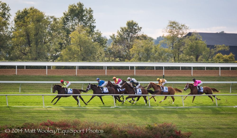 belmont fall meet 2012