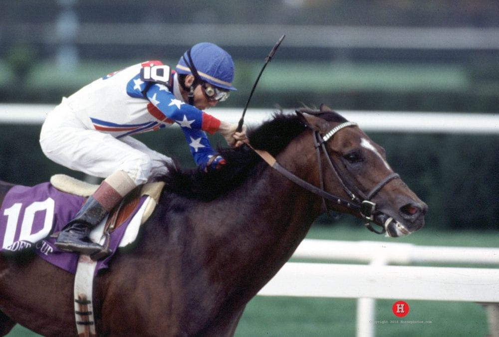 Former Exercise Rider On Cigar Greatest Horse I Ve Ever