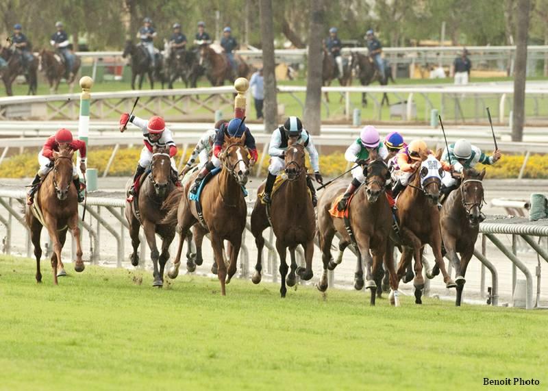 Santa ana park racing race program betting on sports wrtp csgo betting