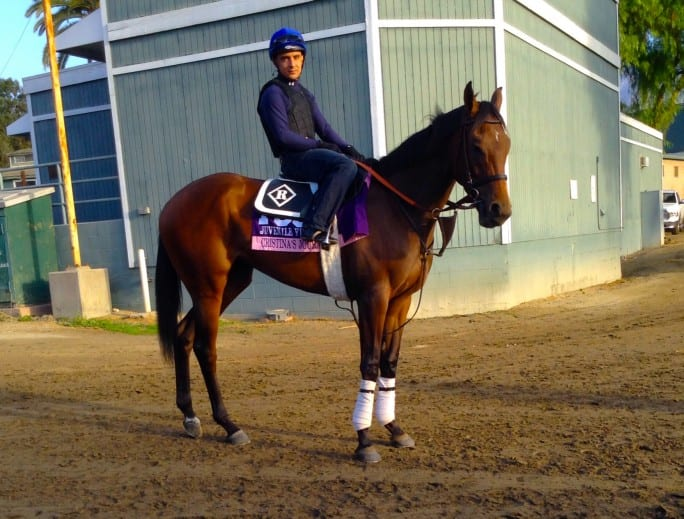 Absorbine Presents Breeders Cup Photo Blog Surf S Up