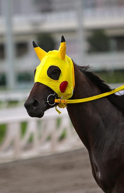 Racehorse Named For Cartoon Captures Imaginations In Hong Kong Horse Racing News