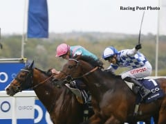 Noble Mission (inside) outduels Al Kazeem to win the 2014 QIPCO Champion Stakes (Group 1).