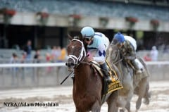 Daredevil earned a 107 Beyer Speed Figure winning the Champagne Stakes