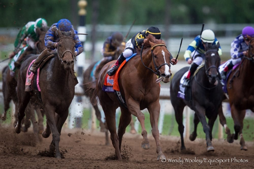 Judy The Beauty Prevails In Photo For Filly Amp Mare Sprint