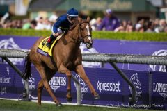 Dayatthespa was among a trio of Grade 1-winning New York-breds in 2014 -- and a year-end champion