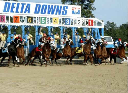 Louisiana Commission Accepts Rmtc Medication Rules Horse