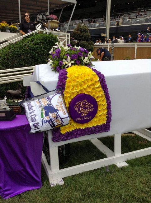 Absorbine Presents Breeders Cup Photo Blog And Away They