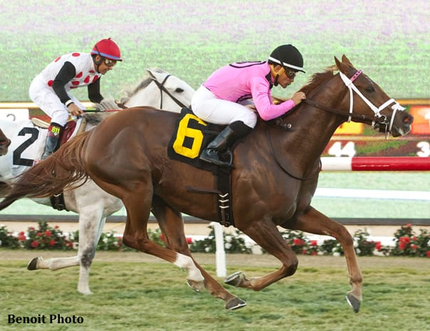 Casse Takes Seabiscuit With Kaigun Horse Racing News