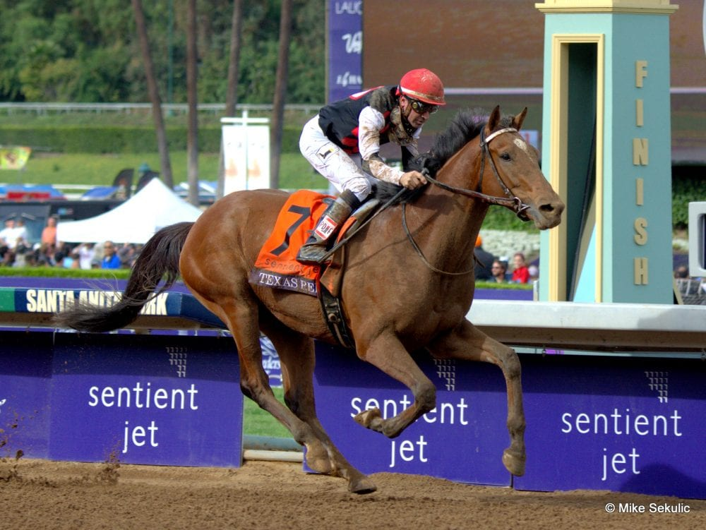 Derby Hopeful Texas Red Temporarily Sidelined With Foot