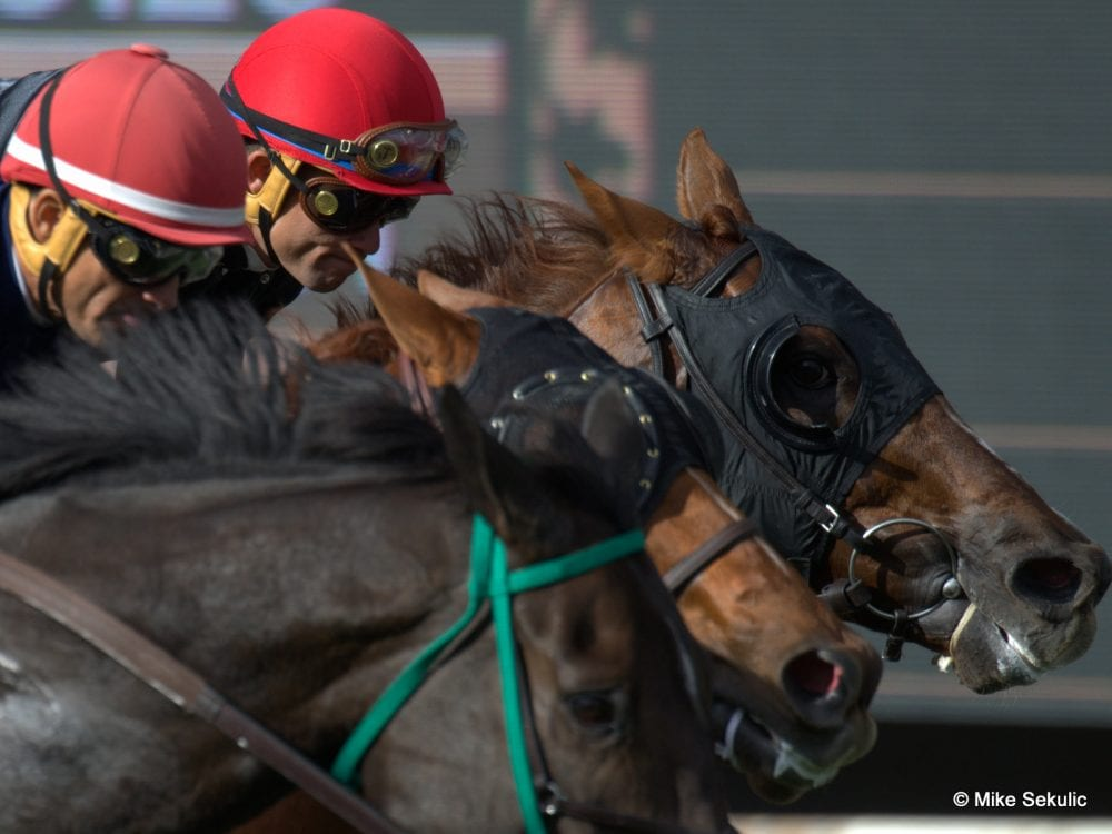 Indiana Grand Jockey Guerrero Suspended After Electrical