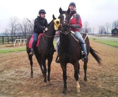 Becrux ponies for a horse wearing blinkers for the first time