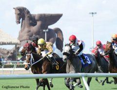 Pegasus_Gulfstream Park