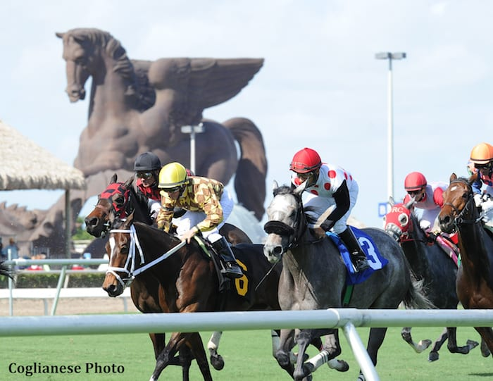 Pegasus World Cup Tops 28 6m Stakes Schedule At