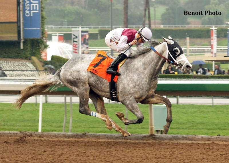 Calculator Dominant In Sham Stakes Victory Horse Racing News Paulick Report