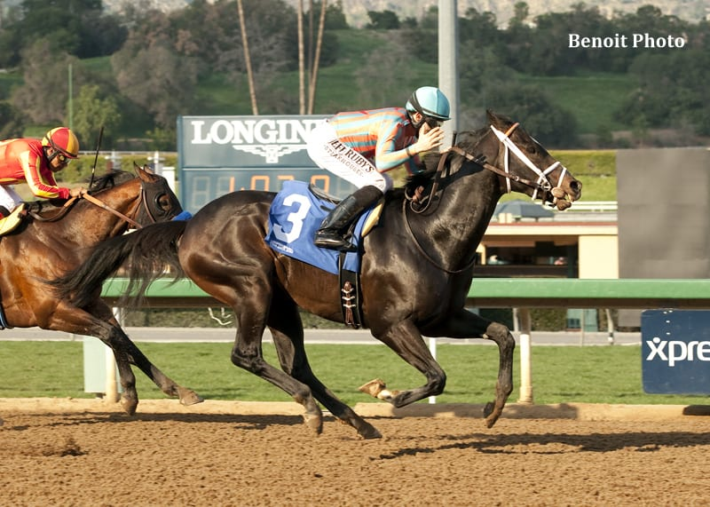 Conquest Two Step Conquers Palos Verdes Horse Racing