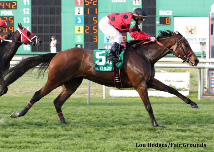 Louisiana Bred Warhorse String King Aims For Fourth