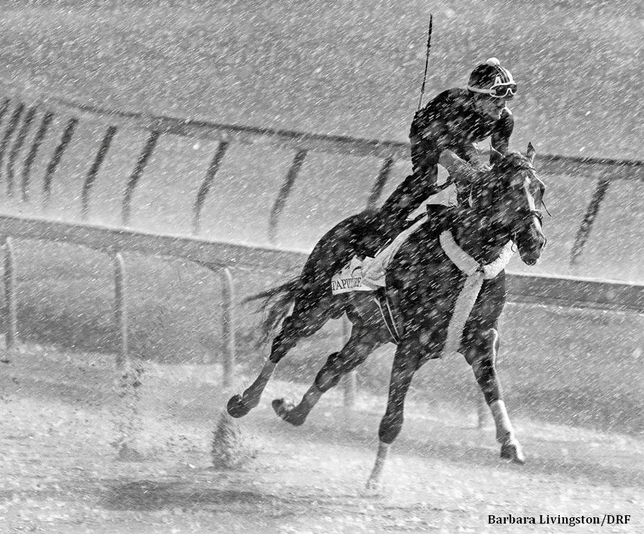 Livingston Wins Record Third Eclipse Award for Photography - Horse ...