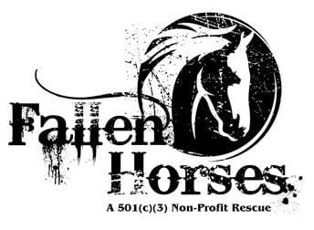 Fallen Horses Rescue Falls On Hard Times Horse Racing