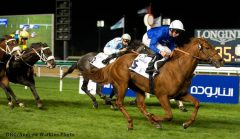 Safety Check won consecutive editions of both the G2 Zabeel Mile and G2 Al Fahidi Fort Stakes at Meydan