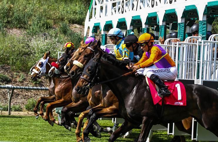 Santa anita one winning pick 6 ticket pays 277 652 for Show pool horse racing