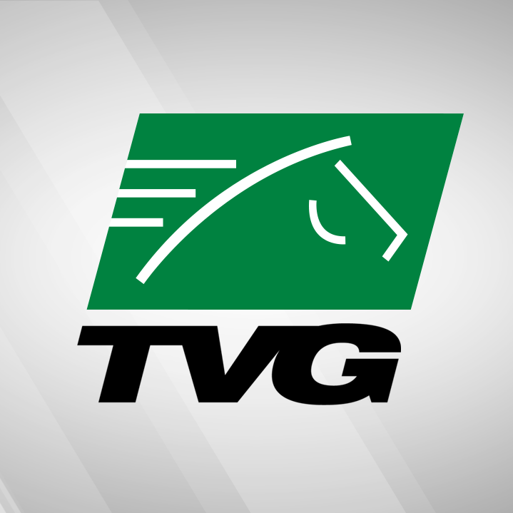Tvg Plans Two Hour Broadcast Of Breeders Cup Post