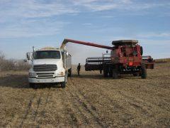 Truck_Grain