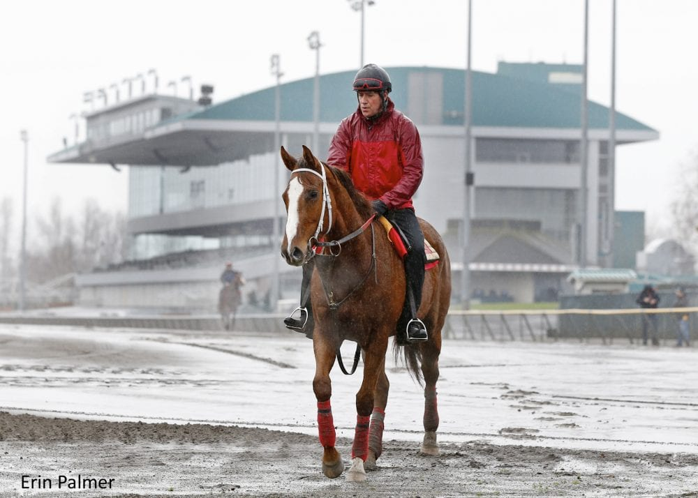 Emerald Downs Opens For Training Ahead Of 2015 Season