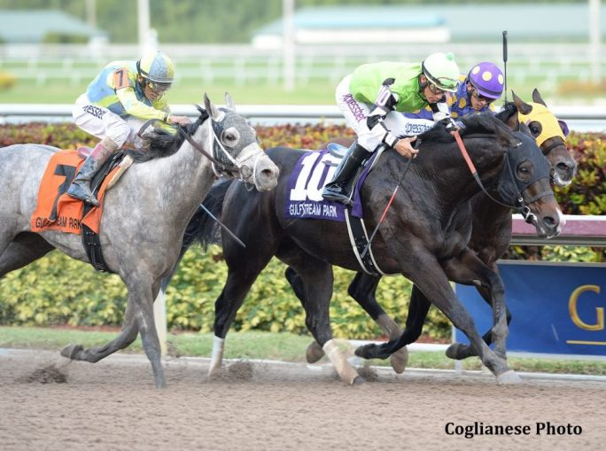 Valid Shows Heart In Fred Hooper Win Paulick Report