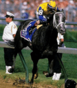 Winning Colors, one of only three fillies to win the Kentucky Derby
