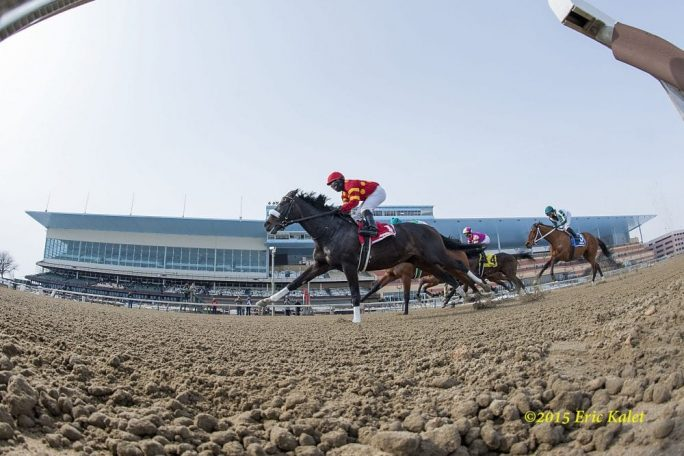 Ehalt Does Future Of New York Racing Include Both Belmont
