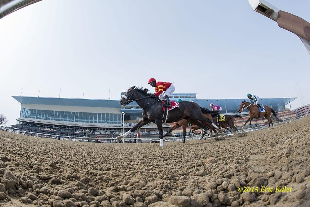 aqueduct horse racing