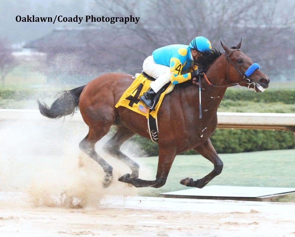 American Pharoah Scores Dominant Rebel Victory Horse