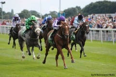 Australia defeated The Grey Gatsby in the 2014 Juddmonte International