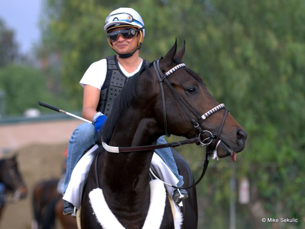 Bejarano To Ride Bolo Borel On El Kabeir For Kentucky