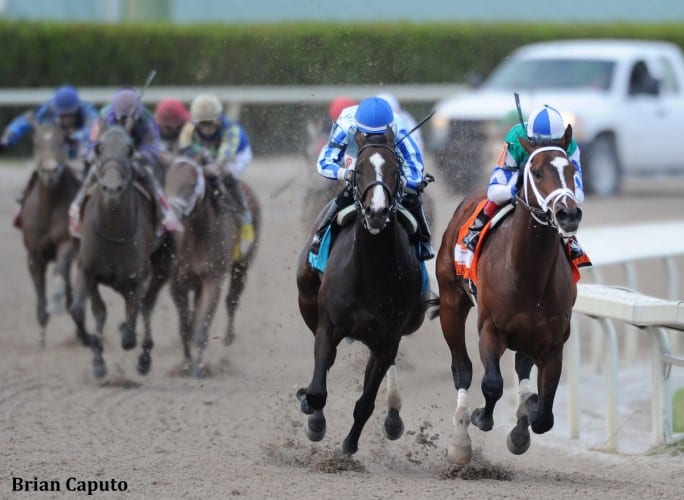 Materiality (inside) and Upstart were well clear of the field into the stretch of the Florida Derby
