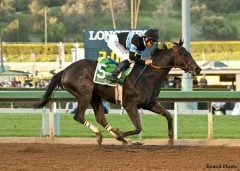 "Litt says the Hollendorfers have pulled off an ""amazing training feat"" with Shared Belief"