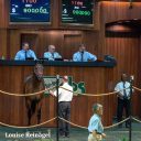 OBS April 2015 Friday session topper, Hip 1100, sold for $900,000 to Linda Rice, agent
