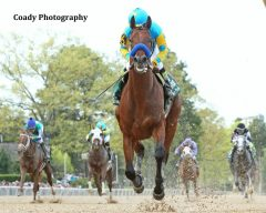 American Pharoah eight lengths clear of his rivals in the Arkansas Derby.