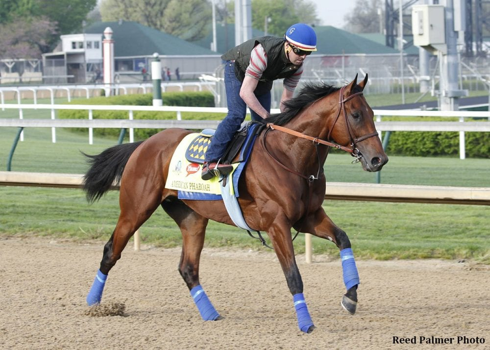 Abr For American Pharoah It S All About The Tail
