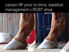A 'before' and 'after' of one of Reimer's cases, managed with ROST shoes
