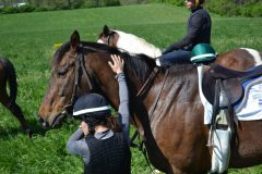 Courtney Comroe pats Jackson while her classmates switch horses